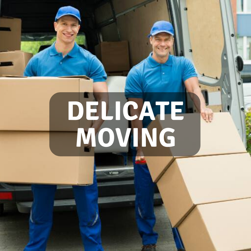 Delicate Moving.png