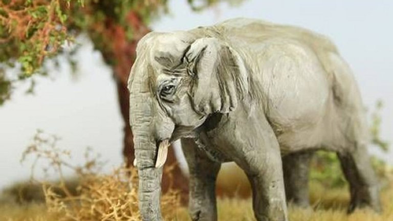 TM001 28mm Asian Elephant 1