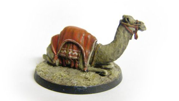 TM006 28mm Camel Sitting