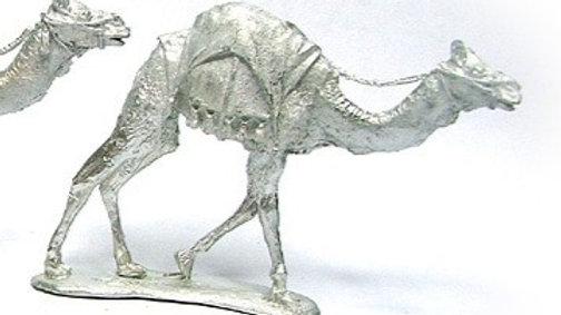 TM005 28mm Camel Walking 2