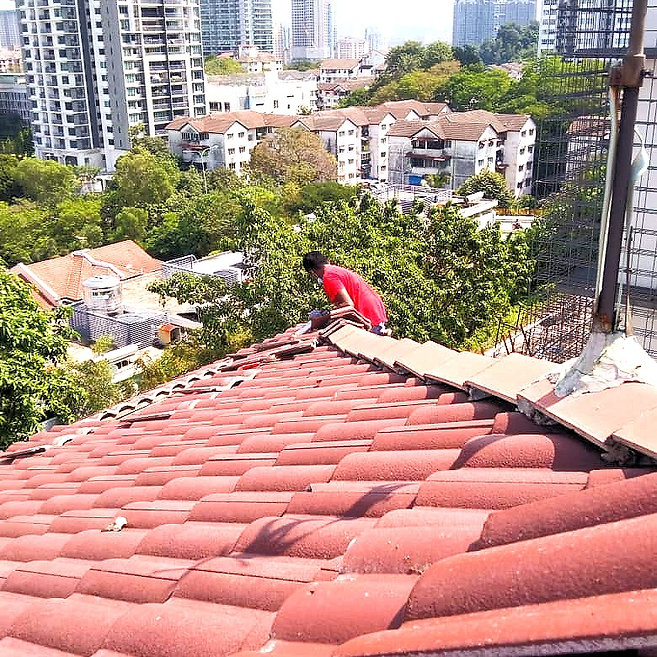 Roof & Gutter Repair - Replacement.jpg