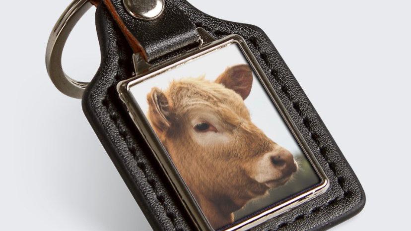 Cow key tag