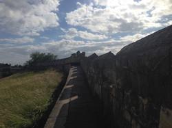El muro de York