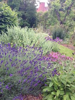 Un jardín perfumado