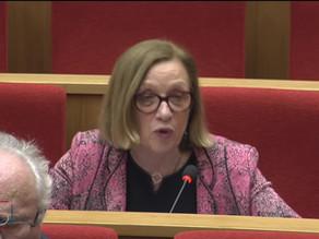 Colette MELOT : Débat préalable au Conseil Européen des 21 et 22 Mars
