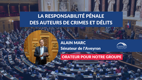 Alain MARC : L'irresponsabilité pénale et la réalisation de l'expertise en matière pénale