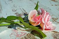rose-2459371_1920.jpg