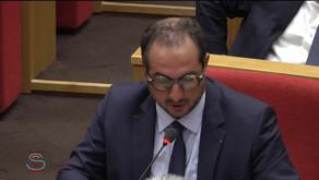 Franck MENONVILLE : Débat préalable au Conseil européen des 20 et 21 juin 2021