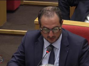 Franck MENONVILLE : Débat préalable au Conseil Européen