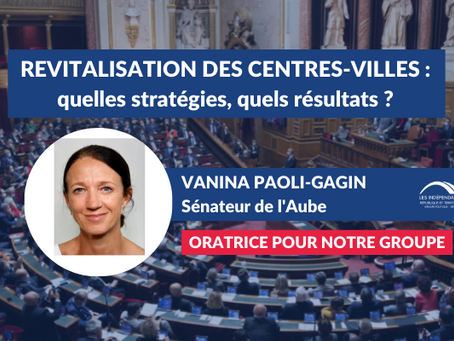 """Vanina PAOLI-GAGIN : """"Revitalisation des centres-villes : quelles stratégies, quels résultats ?"""""""