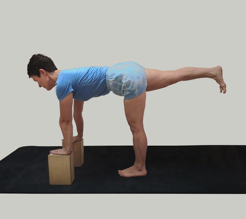 Evening Yoga | 夕方ヨガ