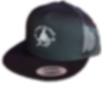 New Hat trans.png