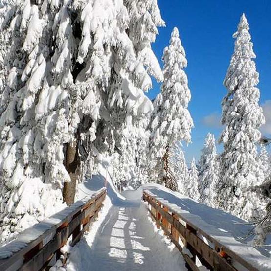 Winterwanderung des TC Grün-Weiß Elz