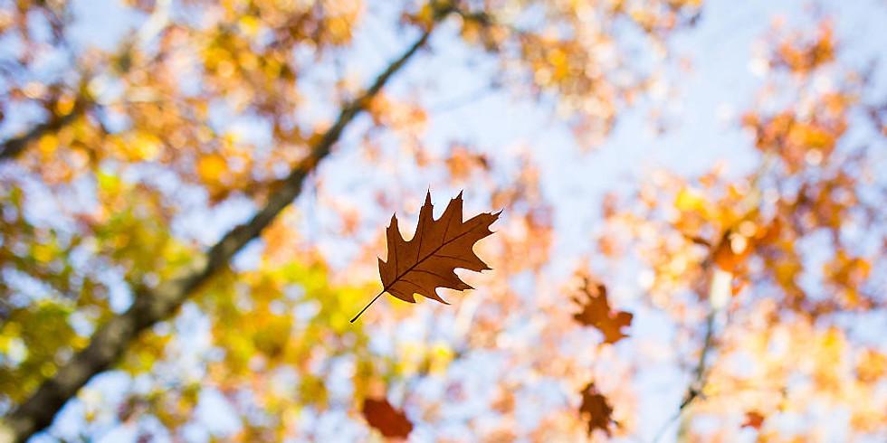 Blätterfall-Turnier mit Benefiz-Turnier
