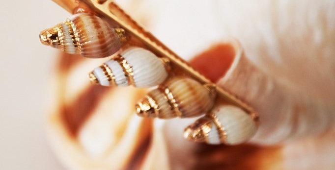 Haarclip met echte zeeschelpen