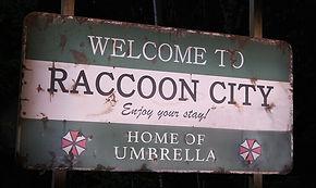 welcomeraccoon_0.jpg