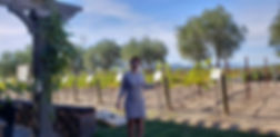 Natalie Napa Valley winery Tour transportaion