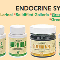 Health of the Endocrine System kit