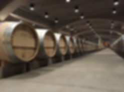 Robert Mondavi Winery Tour wine tasting in Napa Valley CA