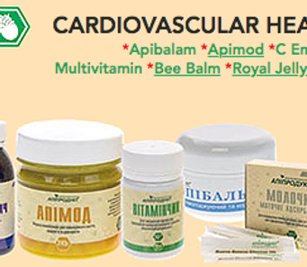 Health of Cardiovascular system kit