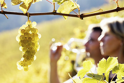 Napa Valley Wine Tour is one of the best romantic getaways