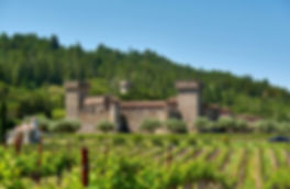 bigstock-Vineyards-with-castle-in-Calif-