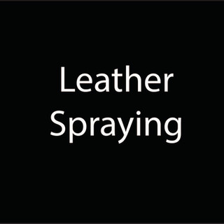 leather spray.jpg