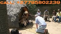 ''+27795802239'' BEST TRADITIONAL HEALER / LOST LOVE SPELLS CASTER in Nukualofa, Port of Spain, Tuni
