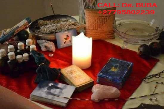 Traditional healer15