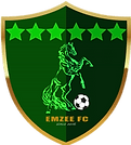 6 stars indicating continents, and a horse indicating strength, football showing what we do