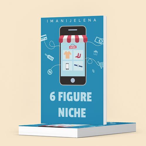 6 Figure Niche Ebook