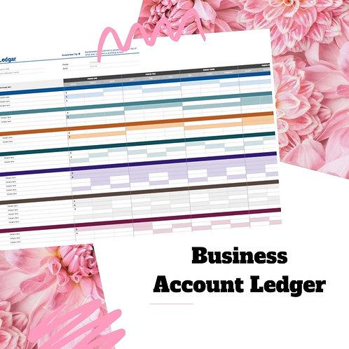 Business Account Ledger