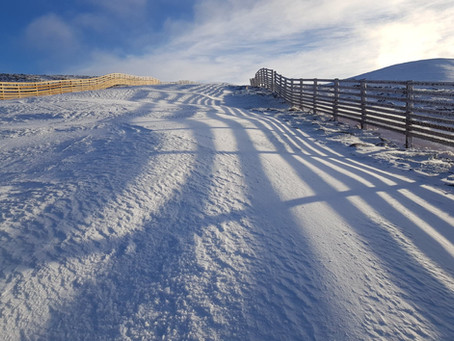 WHAT'S HAPPENING AT CAIRNGORM?
