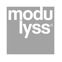 modulyss-vector-logo_edited.jpg