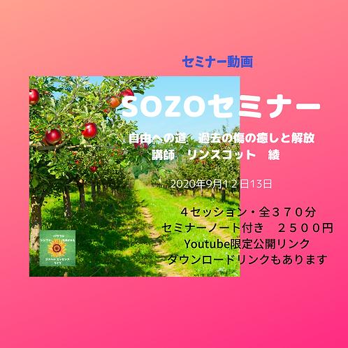 SOZOセミナー2020年9月 動画