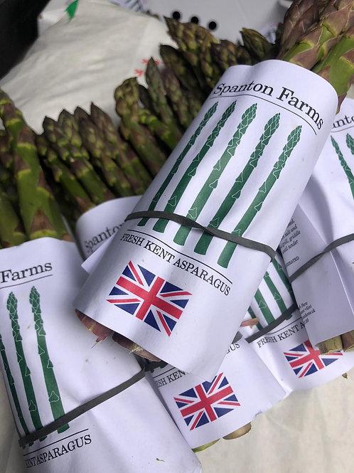 Asparagus (English)