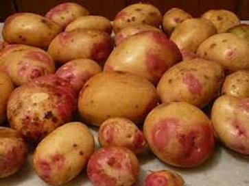 Potatoes (King Edward)