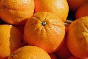 Oranges (Large)