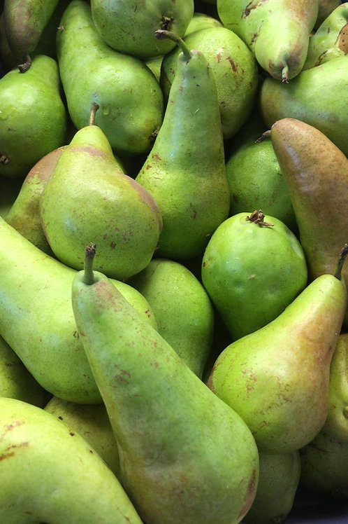 Pears (conference)