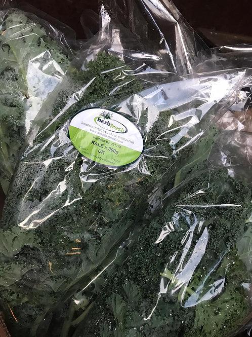 Kale (English Kale)