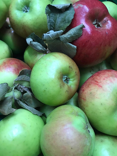 Apples (Bramley)