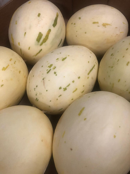 Melons (Sweet Snow Melons)
