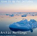 Arctic Mornings.jpg