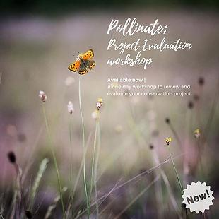 Pollinate.jpg