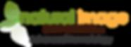 NISC_Logo.png