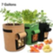 Planter Bags.jpg