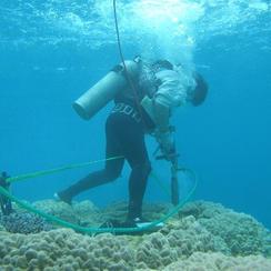 水中サンプリング調査
