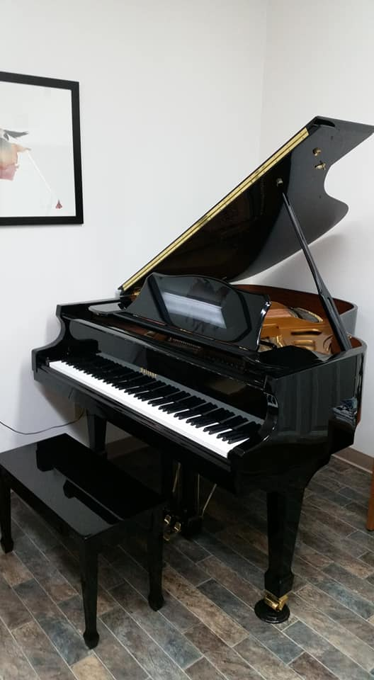 Falcone Baby Grand  SOLD