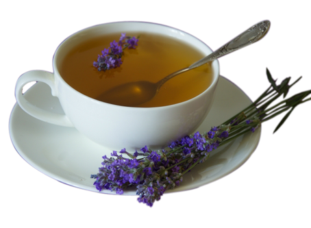 Top 10 Fun Facts about Lavender
