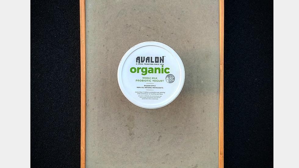 Avalon Organic Yogurt
